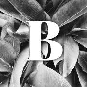 Glosario – B